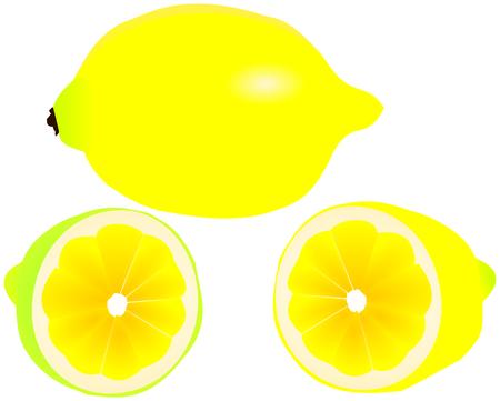 citron: slicing lemon ,lemon, citron ,tropical fruit