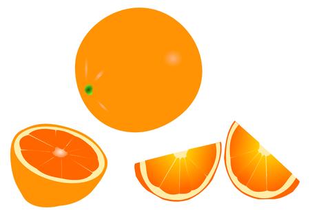 cropcircle: orange, orange slicing , tropical fruit Illustration