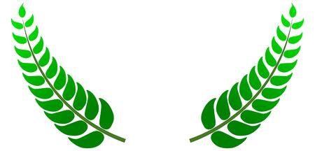 a twig: green twig,  greenery Illustration