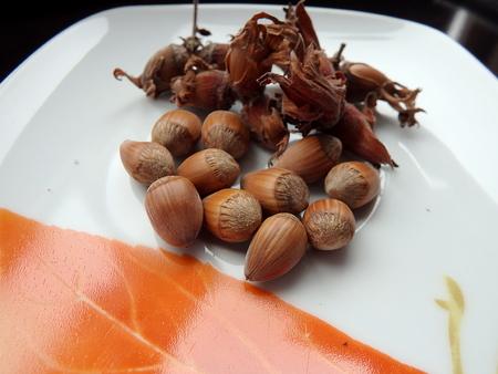 avellanas: hazelnuts , hazelnuts on a plate ,