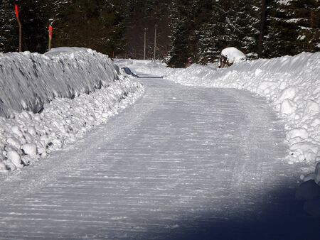 calamity: Snow calamity on forest road, forest road in the winter