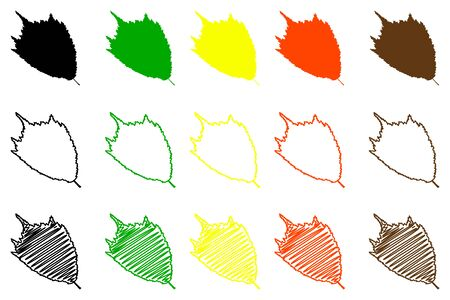 Hoja de olmo - conjunto de colores, hoja de olmo Ilustración de vector