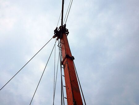 Cableway for timber  transport