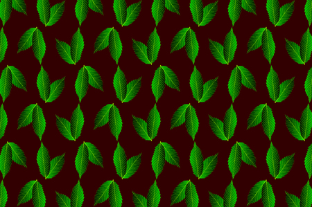 Green leaf chestnut on dark background - vector pattern, (Castanea sativa)