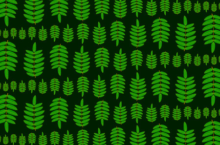 Green leaf of rowan on dark background - vector pattern, (Sorbus aucuparia), Illustration