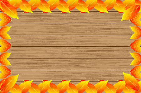 Autumn -  chestnut leaves - vector background, Autumnal leaf of chestnut, (Castanea sativa), Illustration