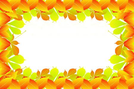 Autumn leave frame design.