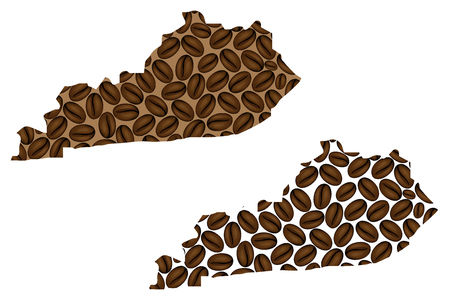 Kentucky (United States of America) - map of coffee bean, Kentucky map made of coffee beans,