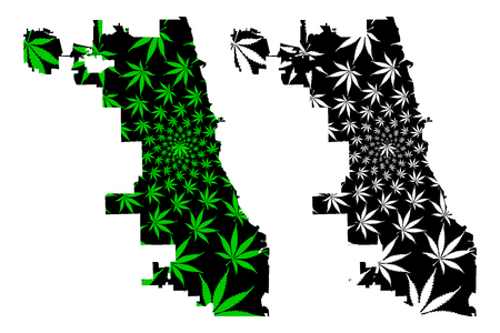 Chicago city (United States of America, USA, U.S., US, United States cities, usa city) -  map is designed cannabis leaf green and black, City of Chicago map made of marijuana (marihuana,THC) foliage,