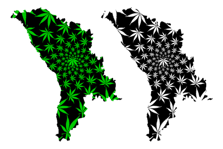 Moldova - map is designed cannabis leaf green and black, Republic of Moldova map made of marijuana (marihuana,THC) foliage,