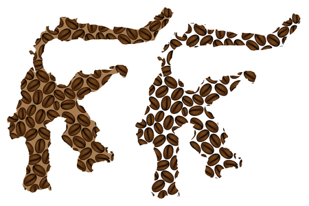 Sulawesi (Celebes) -  map of coffee bean, Sulawesi (Republic of Indonesia) map made of coffee beans,
