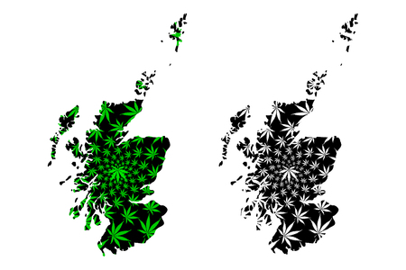 Scotland - map is designed cannabis leaf green and black, Scotland map made of marijuana (marihuana,THC) foliage,