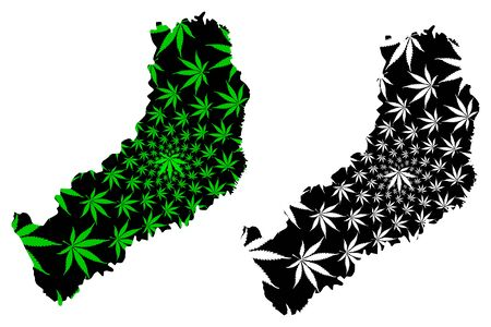 Misiones (Region of Argentina, Argentine Republic, Provinces of Argentina) map is designed cannabis leaf green and black, Misiones Province map made of marijuana (marihuana,THC) foliage,
