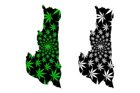 Chin State (Administrative divisions of Myanmar, Republic of the Union of Myanmar, Burma) map is designed cannabis leaf green and black, Chin map made of marijuana (marihuana,THC) foliage Çizim