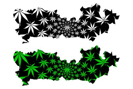 Berkshire (Non-metropolitan county, shire county) map is designed cannabis leaf green and black, Royal County of Berkshire (Berks, Barkeshire) map made of marijuana (marihuana,THC) foliage,