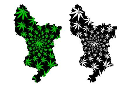 Derbyshire (United Kingdom, England, Non-metropolitan county, shire county) map is designed cannabis leaf green and black, Derbyshire map made of marijuana (marihuana,THC) foliage