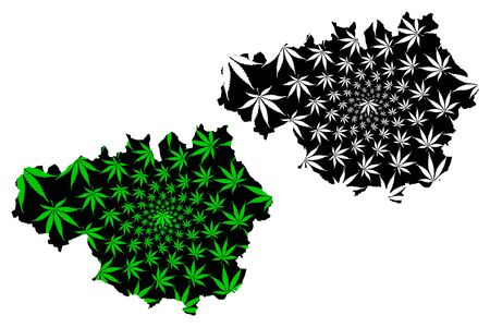 Greater Manchester (United Kingdom, England, Metropolitan county) map is designed cannabis leaf green and black, Greater Manchester map made of marijuana (marihuana,THC) foliage