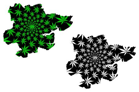 Essex (United Kingdom, England, Non-metropolitan county, shire county) map is designed cannabis leaf green and black, Essex map made of marijuana (marihuana,THC) foliage