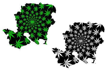 Hampshire (United Kingdom, England, Non-metropolitan county, shire county) map is designed cannabis leaf green and black, Hampshire (Hants) map made of marijuana (marihuana,THC) foliage