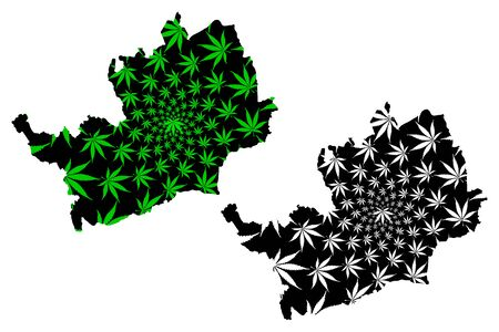 Hertfordshire (United Kingdom, England, Non-metropolitan county, shire county) map is designed cannabis leaf green and black, Hertfordshire (Herts) map made of marijuana (marihuana,THC) foliage