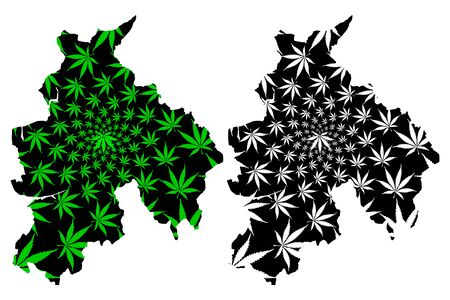 Lancashire (United Kingdom, England, Non-metropolitan county, shire county) map is designed cannabis leaf green and black, Lancs. map made of marijuana (marihuana,THC) foliage