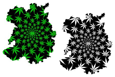 Shropshire (United Kingdom, England, Non-metropolitan county, shire county) map is designed cannabis leaf green and black, Salop (Shrops, Salopian) map made of marijuana (marihuana,THC) foliage