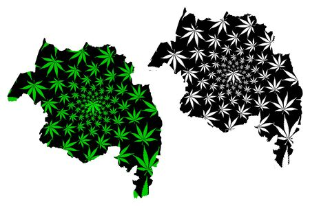 Amhara Region (Federal Democratic Republic of Ethiopia, Horn of Africa) map is designed cannabis leaf green and black, Amhara State map made of marijuana (marihuana,THC) foliage 일러스트