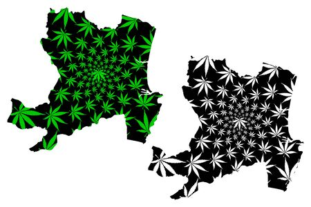 Aberdeen (United Kingdom, Scotland, Local government in Scotland) map is designed cannabis leaf green and black, City and council area Aberdeen map made of marijuana (marihuana,THC) foliage