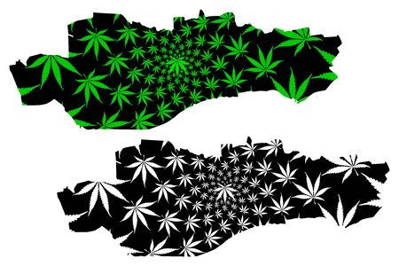 Dundee (United Kingdom, Scotland, Local government in Scotland) map is designed cannabis leaf green and black, City and council area Dundee map made of marijuana (marihuana,THC) foliage