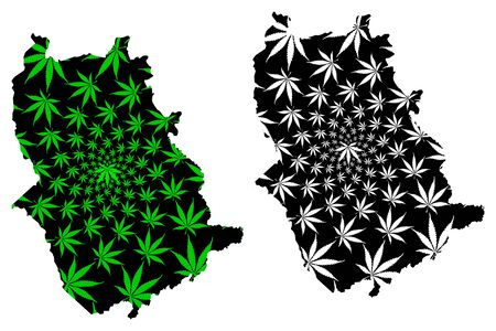 Amazonas State (Bolivarian Republic of Venezuela, Federal Dependencies and Capital District) map is designed cannabis leaf green and black, Amazonas map made of marijuana (marihuana,THC) foliage  イラスト・ベクター素材