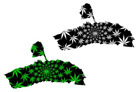 Falcon State (Bolivarian Republic of Venezuela, Federal Dependencies and Capital District) map is designed cannabis leaf green and black, Falcon map made of marijuana (marihuana,THC) foliage  イラスト・ベクター素材