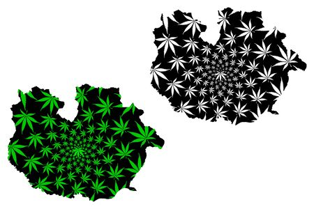Guarico State (Bolivarian Republic of Venezuela, Federal Dependencies and Capital District) map is designed cannabis leaf green and black, Guarico map made of marijuana (marihuana,THC) foliage  イラスト・ベクター素材