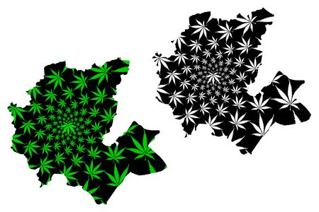 Fes-Meknes Region (Kingdom of Morocco, Regions of Morocco) map is designed cannabis leaf green and black, Fas Meknas map made of marijuana (marihuana,THC) foliage Иллюстрация