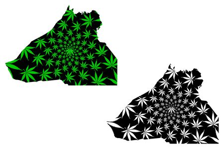 Guelmim-Oued Noun Region (Kingdom of Morocco, Regions of Morocco) map is designed cannabis leaf green and black, Guelmim Oued Noun map made of marijuana (marihuana,THC) foliage Иллюстрация