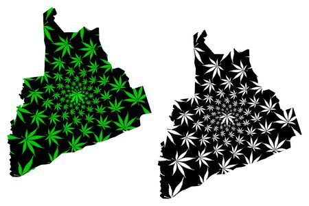 Bas-Sassandra District (Ivory Coast, Republic of Cote dIvoire) map is designed cannabis leaf green and black, Bas Sassandra map made of marijuana (marihuana,THC) foliage