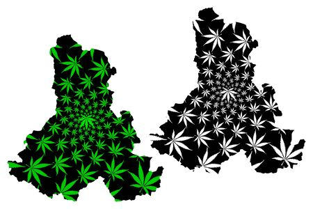 Harghita County (Administrative divisions of Romania, Centru development region) map is designed cannabis leaf green and black, Harghita map made of marijuana (marihuana,THC) foliage