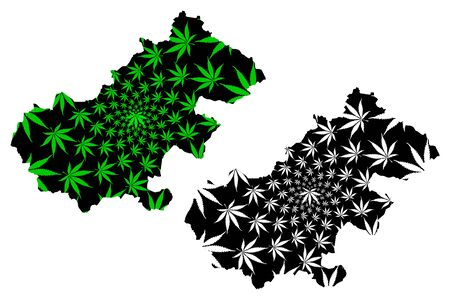 Satu Mare County (Administrative divisions of Romania, Nord-Vest development region) map is designed cannabis leaf green and black, Satu Mare map made of marijuana (marihuana,THC) foliage Stock Vector - 137969839