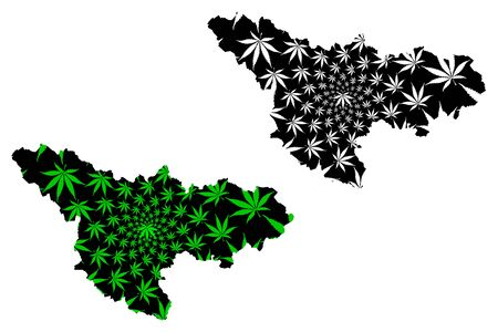 Timis County (Administrative divisions of Romania, Vest development region) map is designed cannabis leaf green and black, Timis map made of marijuana (marihuana,THC) foliage