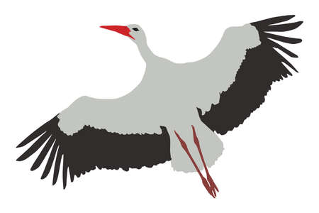 White stork (Ciconia ciconia), flying color silhouette of a bird Ilustracja