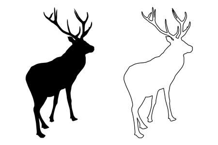 Red deer (Cervus elaphus) black silhouette, stag or hart,