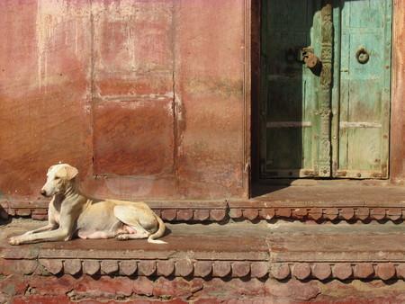 Indian doors and windows. House facade. Stock Photo - 120521072
