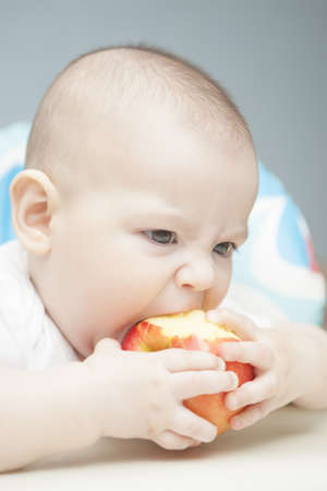 portrait of gesturing young caucasian little tot  eating apple and sitting in childs chair Stock Photo