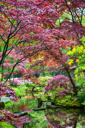 Travel Concepts. Amazing Iconic Red Bridge and Scenery of Japanese Garden in the Hague (Den Haag) in the Netherlands Straight After the Rain.Vertical Image