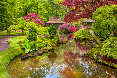 Travel Concepts. Amazing Picturesque Scenery of Japanese Garden with Asian Zen Sculptures  on Background in the Hague (Den Haag) in the Netherlands Straight After the Rain. Horizontal Image