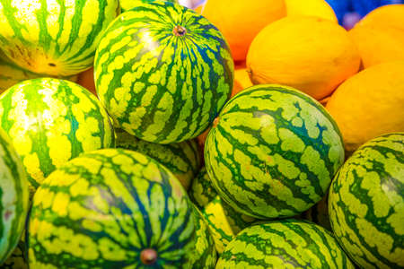 Closeup of Melon and Watermelon Bunch Placed in Boxes at Market Place.Horizontal Image
