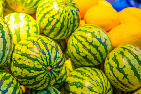 Closeup of Melon and Watermelon Bunch Placed in Boxes at Market Place.Horizontal Image Composition