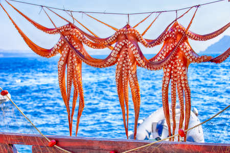 Unique Travel Destinations. Line of Octopuses Drying At Open Deck Restaurant on Santorini Island in Oia Village in Greece. Famous Greek Seafood on Grill.Horizontal Image