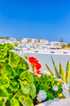 View of Thira City on santorini Island in Greece with Flowers on Foreground. Focus on Flowers. Vertical Shot