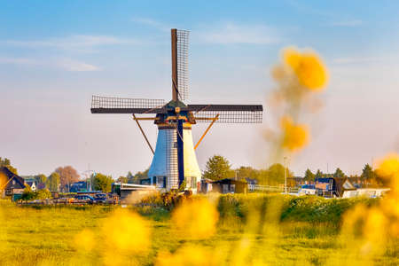 Dutch Windmill In Front of The Canal With Large Number of Small Mosquitos in Frame. Located in Traditional Village in Holland, The Netherlands. Shot at Kinderdijk During Golden Hour. Horizontal Image
