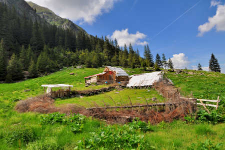 sheepfold: Old wooden sheepfold in mountains